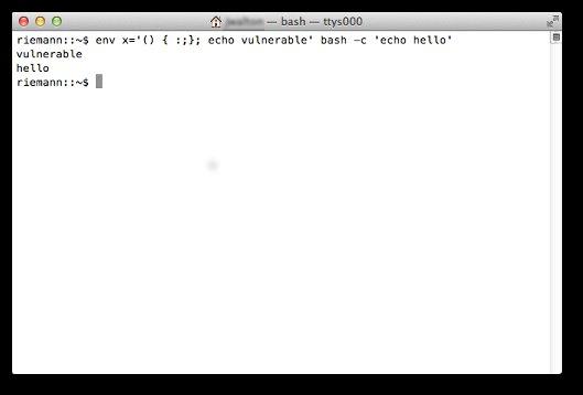Screenshot of bash terminal showing vulnerability in 10.8.5